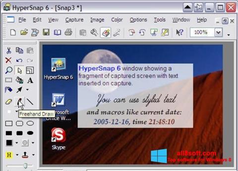 Screenshot HyperSnap para Windows 8
